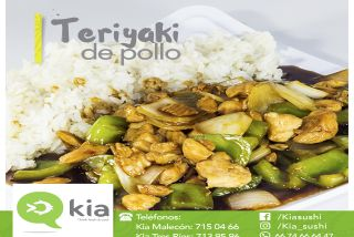Teriyaki de Pollo